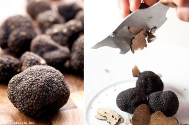 truffles_macchi